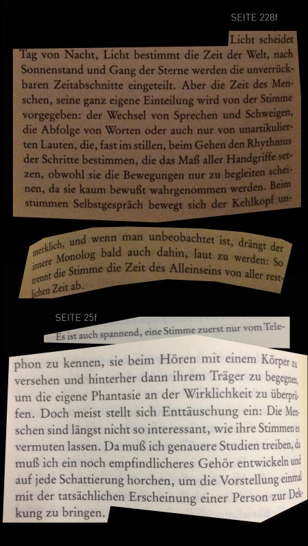 marcel-beyer-flughunde-s.25-und-s.228.jpg